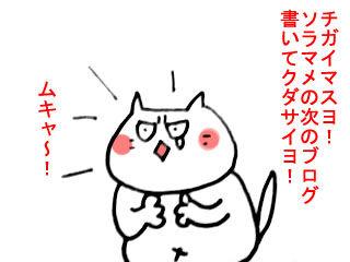 ネクスト・ソラマメ (3)