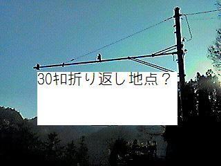 17160ccab1d42b10d73a-L