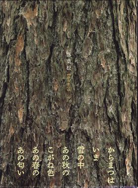落葉松表紙