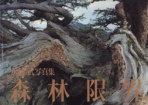 森林限界IMG