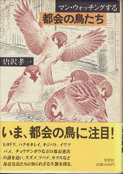 都会の鳥たち2