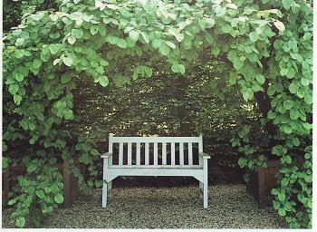 緑陰ベンチ1
