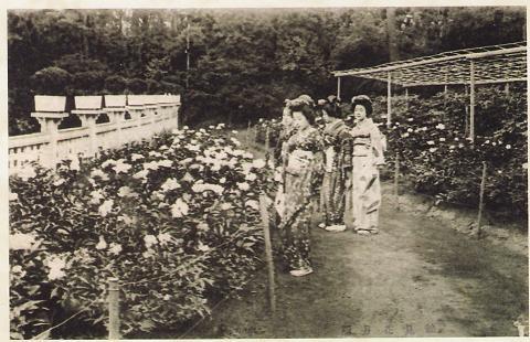 花月園花壇2
