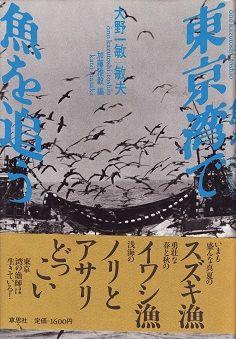 東京湾で魚を追う