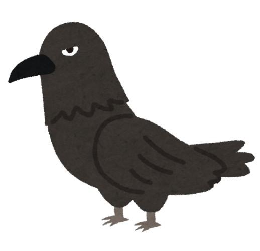 カラスって本当は黒い鳥じゃないって知ってた?