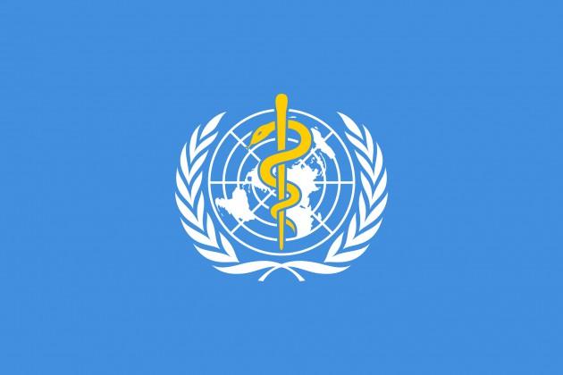 【速報】WHO、新型肺炎の世界的流行を認定