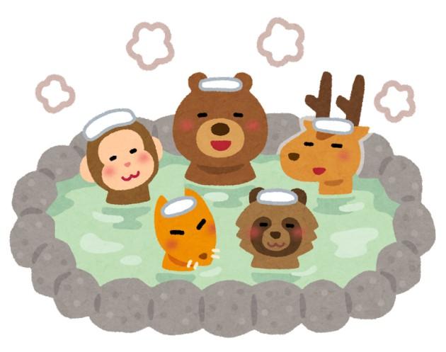 何故日本の生き物はどいつもこいつも地味なのか