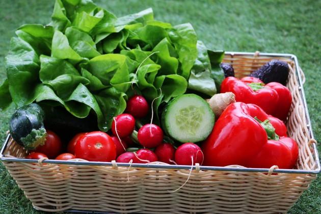 ビーガン菜食主義は寿命が20年縮まると判明