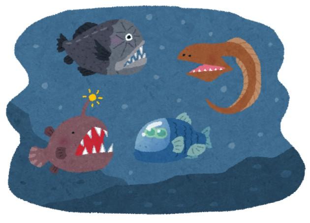 深海の新種探すめっちゃ簡単な方法思いついた!!!!!!!!