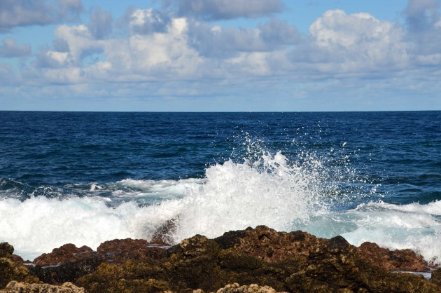 埼玉か東京に住んでる人に聞きたいんだけど海をちょっと見たいなと思ったらどこに行ってる?