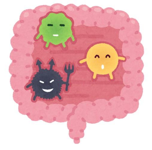 心の正体ってもしかして腸内細菌じゃないか?