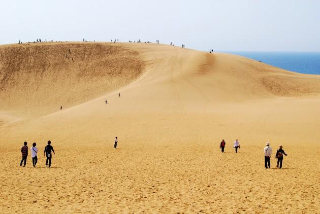 鳥取砂丘の年間維持費wwwwwwwwwwwwwwww