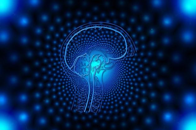 脳も体と同様に年を取れば衰えること知ってるよな?