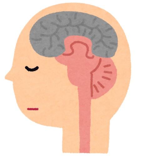 植物人間に睡眠薬(マイスリー)を投与してみた → 意識を取り戻し会話できるように ※