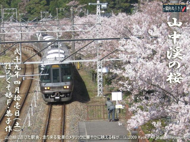4/11(土)【山中渓の桜】山の緑に古びた駅舎そして走り来る電車のメタリックに桜が映える!@キャツピ&めん吉の【ぼろくそパパの独り言】    ▼クリックで1280x960pxlsに拡大します。