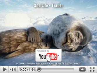 ※クリックでYouTube『ライフ —いのちをつなぐ物語—  ONE LIFE』予告編へ