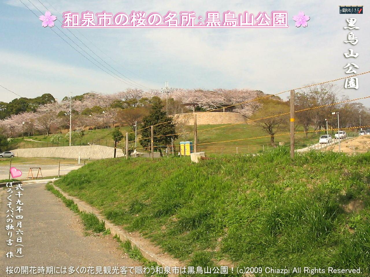 4/6(月)【黒鳥山公園】桜の開花時期には多くの花見観光客で賑わう和泉市は黒鳥山公園の桜!@キャツピ&めん吉の【ぼろくそパパの独り言】     ▼クリックで1280x960pxlsに拡大します。
