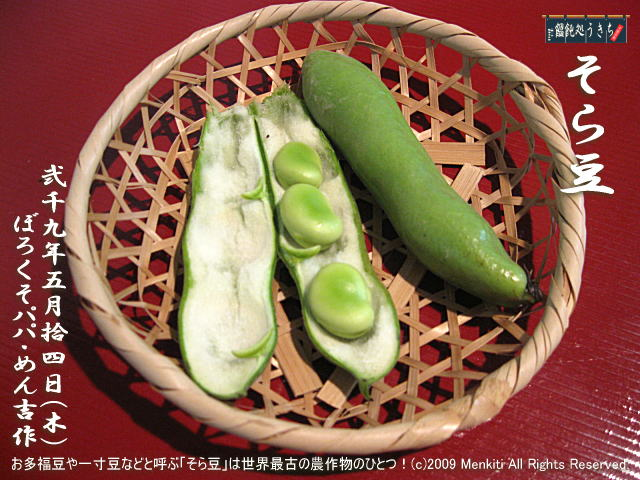 5/14(木)【そら豆】お多福豆や一寸豆などと呼ぶ「そら豆」は世界最古の農作物のひとつ! @キャツピ&めん吉の【ぼろくそパパの独り言】▼マウスオーバー(カーソルを画像の上に置く)で別の画像に替わります。    ▼クリックで1280x960画像に拡大します。