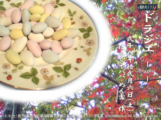 色づく裏庭の紅葉の写真を背景に幸のお土産ドラジェの写真@キャツピ&めん吉の【ぼろくそパパの独り言】       ▼クリックで拡大します。
