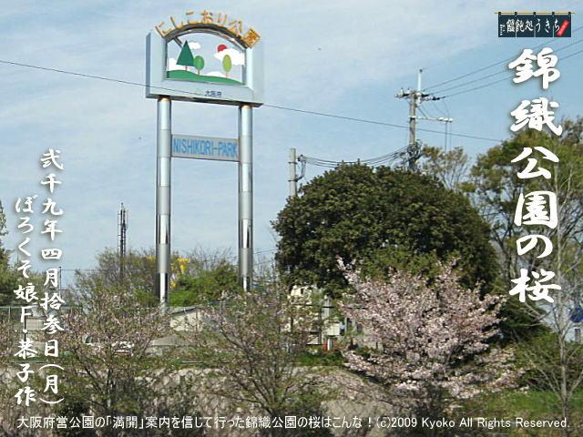 4/13(月)【錦織公園の桜】大阪府営公園の「満開」状況を信じて行った錦織公園の桜はこんな!@キャツピ&めん吉の【ぼろくそパパの独り言】     ▼クリックで元の画像が拡大します。