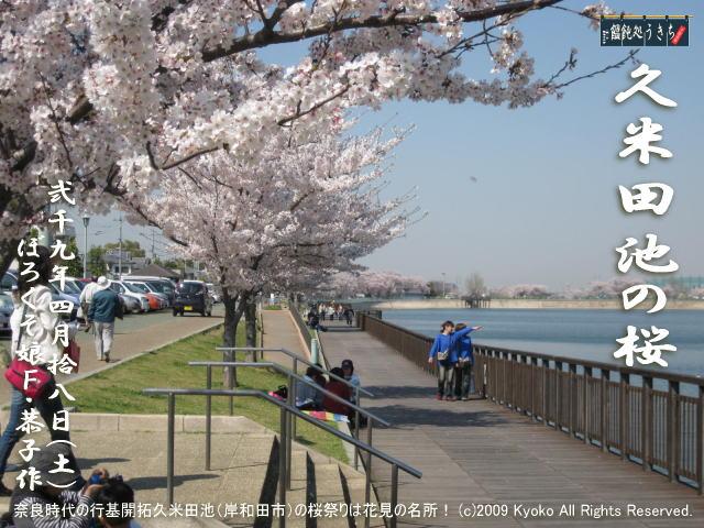 4/18(土)【久米田池の桜】奈良時代の行基開拓久米田池(岸和田市)の桜祭りは花見の名所! @キャツピ&めん吉の【ぼろくそパパの独り言】      ▼クリックで元の画像が拡大します。
