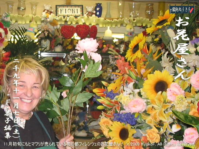 11/7(土)【お花屋さん】11月初旬にもヒマワリが売られている花の都フィレンツェのお花屋さん! (c)2009 KyokoF. All Rights Reserved. @キャツピ&めん吉の【ぼろくそパパの独り言】     ▼クリックで元の画像が拡大します。