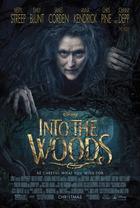 映画『 イントゥ・ザ・ウッズ (2014) INTO THE WOODS 』ポスター