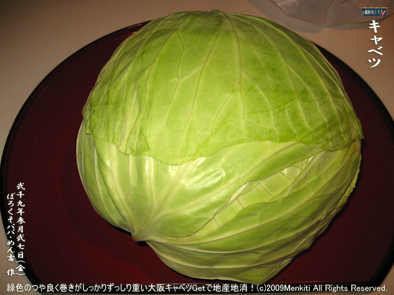 3/27(金)【キャベツ】緑色のつや良く巻きがしっかりずっしり重い大阪キャベツGetで地産地消!@キャツピ&めん吉の【ぼろくそパパの独り言】     ▼クリックで1280x960pxlsに拡大します。