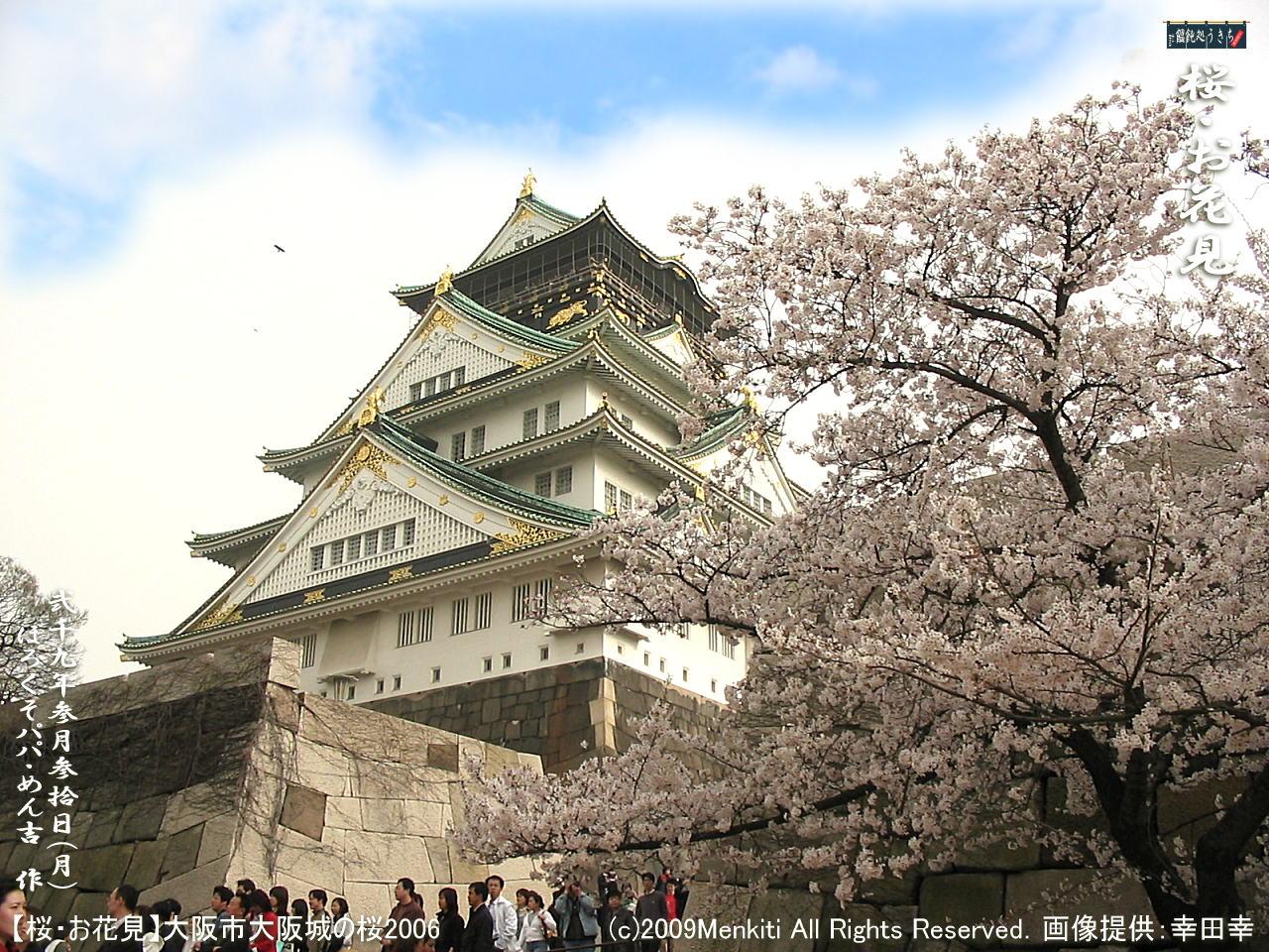 3/30(月)【桜・お花見(1)】お弁当2つ持って大阪城の桜から始まって和歌山迄のお花見の梯子をして廻ろう!@キャツピ&めん吉の【ぼろくそパパの独り言】     ▼クリックで1280x960pxlsに拡大します。