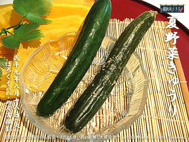 8/18(火)【夏野菜きゅうり】夏野菜きゅうりは料理の名脇役!それとも使い難い能無し大根役者? @キャツピ&めん吉の【ぼろくそパパの独り言】 ▼マウスオーバー(カーソルを画像の上に置く)で別の画像に替わります。     ▼クリックで1280x960画像に拡大します。