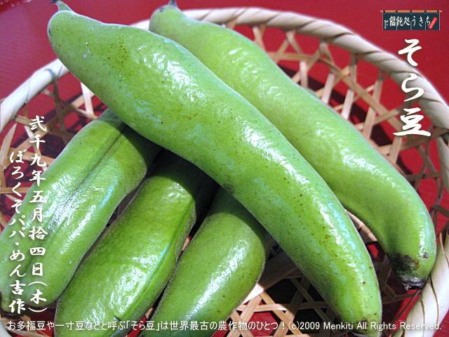 5/14(木)【そら豆】お多福豆や一寸豆などと呼ぶ「そら豆」は世界最古の農作物のひとつ! @キャツピ&めん吉の【ぼろくそパパの独り言】 ▼マウスオーバー(カーソルを画像の上に置く)で別の画像に替わります。 ▼クリックで640x480画像に拡大します。