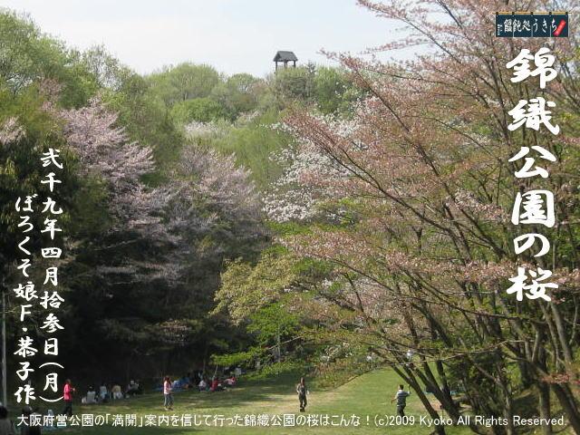 4/13(月)【錦織公園の桜】大阪府営公園の「満開」状況を信じて行った錦織公園の桜はこんな!@キャツピ&めん吉の【ぼろくそパパの独り言】     ▼クリックで1280x960pxlsに拡大します。