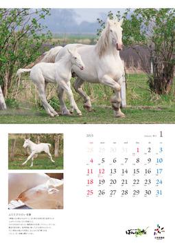 2015太田宏昭calendar_1月web