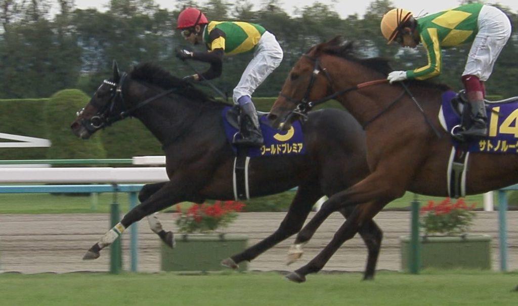 【競馬】有馬3着後休養中のワールドプレミアはジャパンCで11ヶ月ぶり復帰