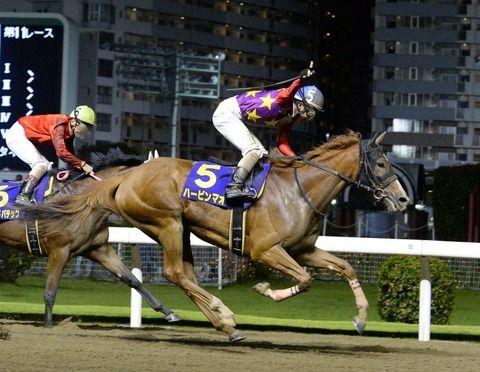 【競馬】関東オークスをハービンマオで制しガッツポーズしまくる松岡騎手【画像】