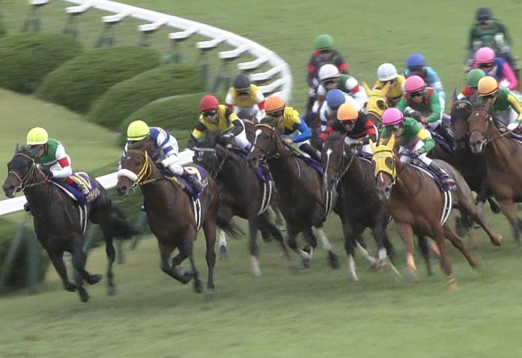 【競馬】名牝クリソプレーズの最後の仔(牡1・父キタサンブラック)、疝痛で死亡