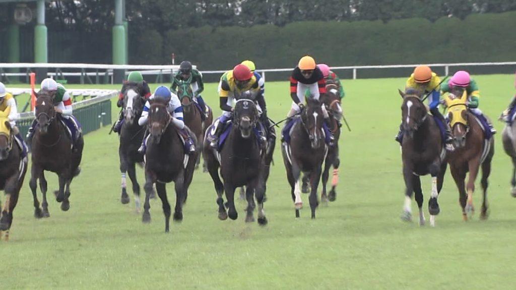 【競馬】高松宮記念に外国馬が一頭予備登録…