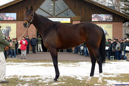 【競馬】ディープインパクト以降、本当に強い馬が出ていない件について