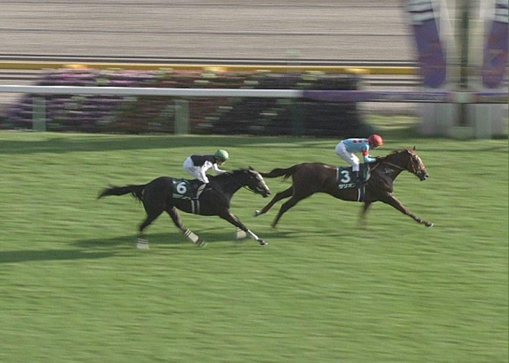 【競馬】悲報・・桜花賞出走予定のクラヴァシュドールが木曜追いを行った理由「軽いザ石」