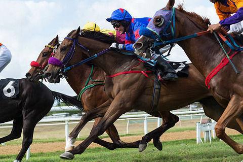 水沢競馬で隣の馬に噛みつきに行って降着wwwwwwww
