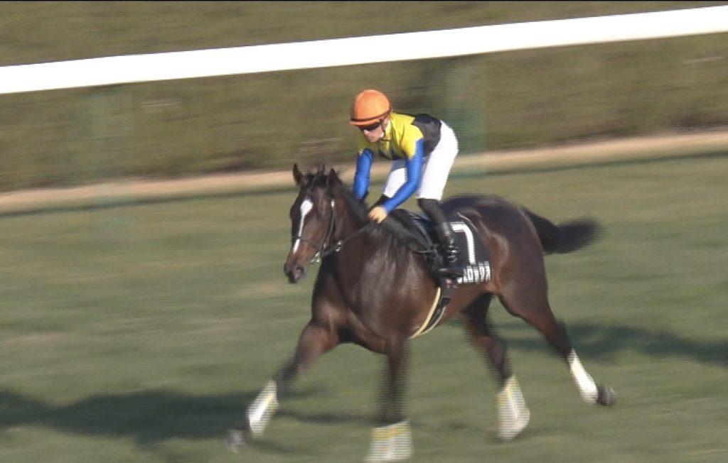 【競馬】川田ゆうがはヴェロックスで大阪杯へ