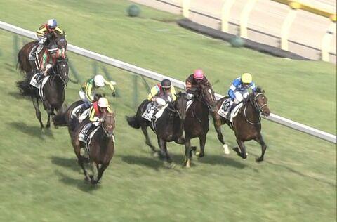 【競馬】今年の堀厩舎の2歳馬凄すぎwww