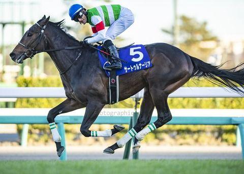 【競馬】サートゥルナーリアの兄であるエピファネイアって言うほど強かったの?
