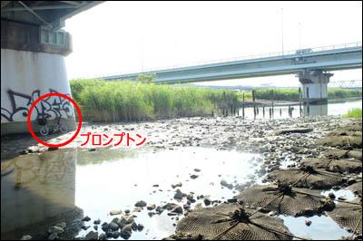 180727-ハゼ釣り2018_荒川四ツ木橋011