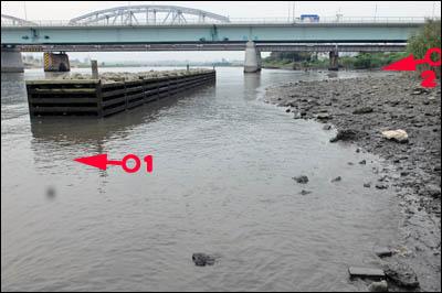170831-ハゼ釣り2017_荒川堀切橋002