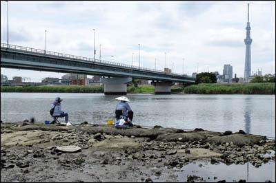 170804-ハゼ釣り2017_荒川四ツ木橋006
