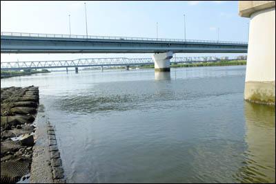 180727-ハゼ釣り2018_荒川四ツ木橋001