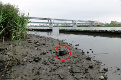 170819-ハゼ釣り2017_荒川堀切橋001