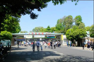 170505-上野動物園001
