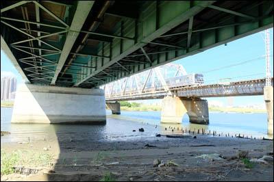 180827-ハゼ釣り2018_荒川堀切橋007